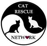 cat rescue network.jpg