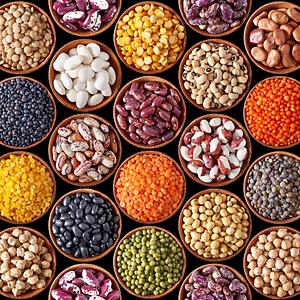 Organic Lentils, Toordal, Moon Dal, Urad Dal