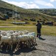 Cullen, Tierra del Fuego