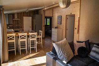 Roscoe living area.jpeg