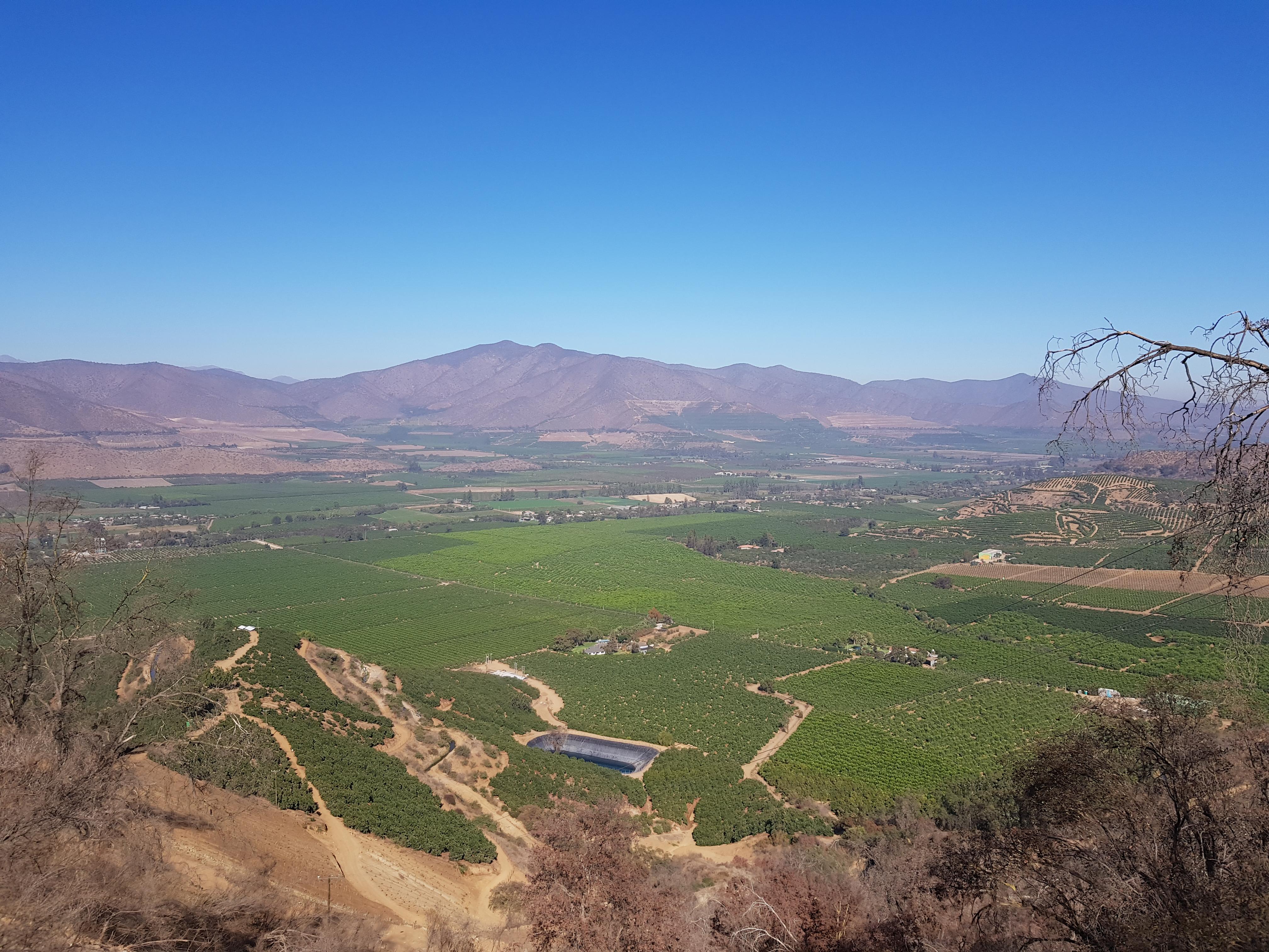 Agrícola Santa Teresa Mallarauco