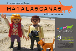 Viaje a Matalascañas