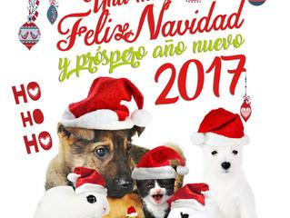 Medivetnova y Clínica Veterinaria Mediterránea os desean Feliz Navidad!