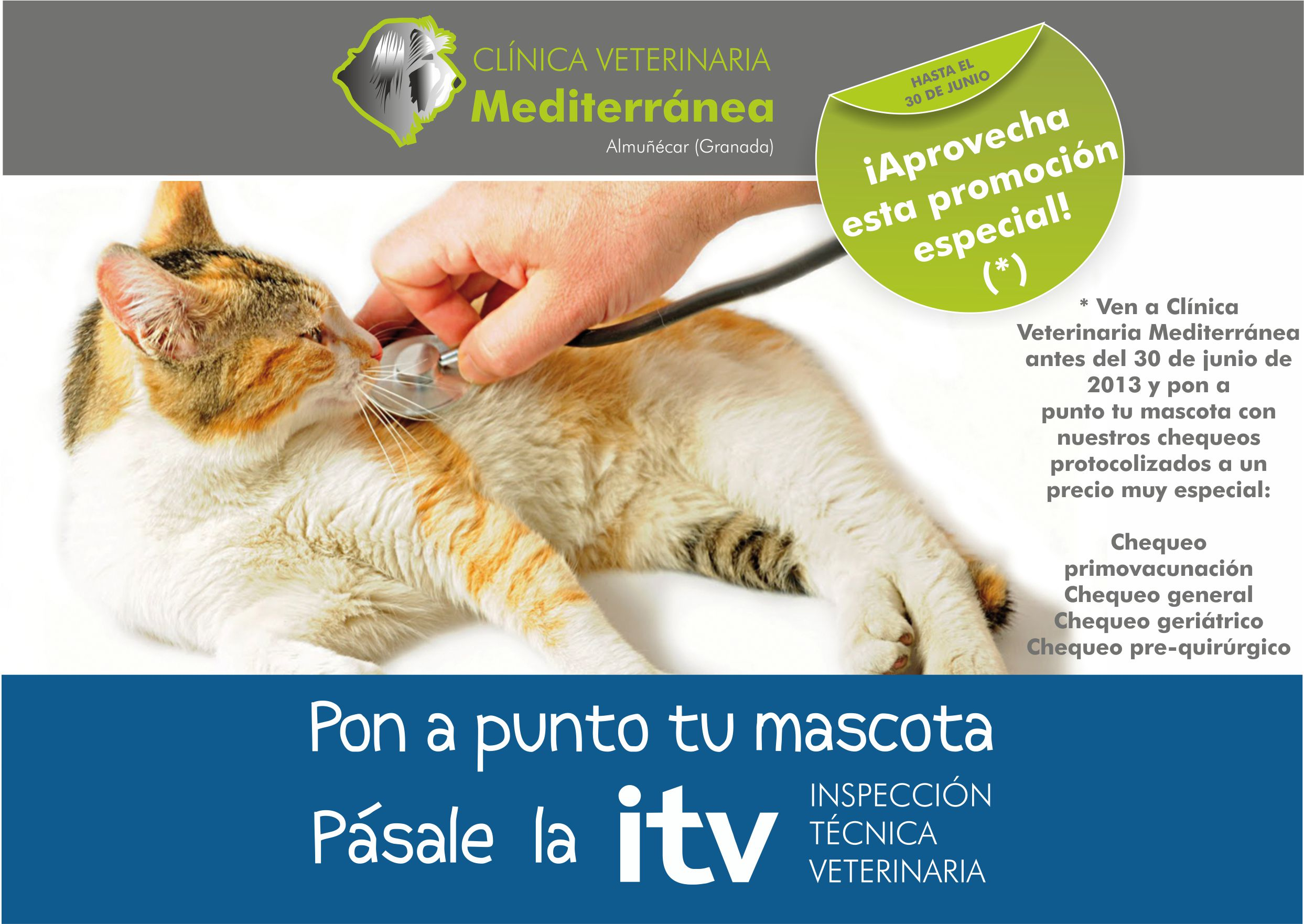 Pásale la ITV a tu mascota