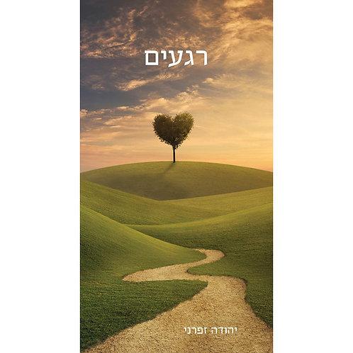 רגעים - יהודה זפרני