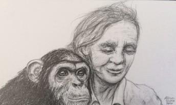 Jane with Chimp (study 2)