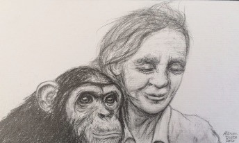 Jane with Chimp (study 2)