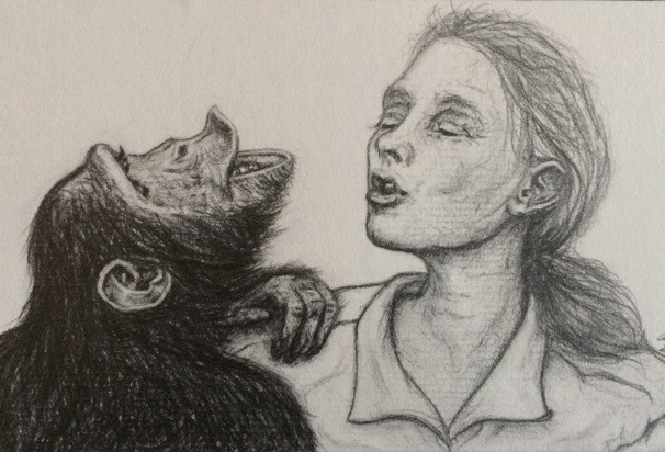 Jane with Chimp (study 1)