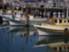San Francisco by Gilles visite privée Port Fisherman Warf Aquatic park cove