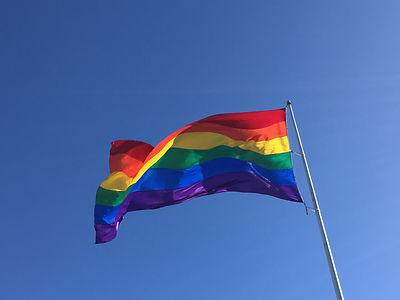 San Francisco by Gilles visite privée Rainbow flag drapeau glbt lgbt gaycities gay homosexuel lesbienne arc en ciel pink triangle