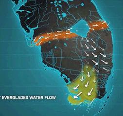 Current Everglades Water Flow.jpg