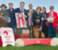 Tanner Best In show Montgomer County Kennel Club 2016