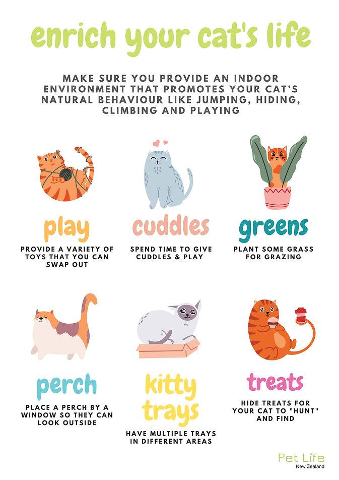 Enroch your indoor cat's life