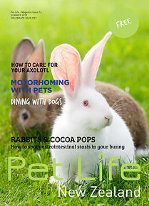 Issue 12 Cover.jpg