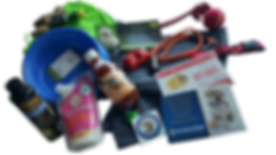 Dog products and accessories in New Zealand