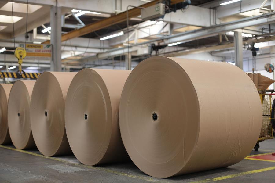 big-paper-rolls-web.jpg