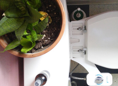Using a Bidet (And Why You Might Actually Like It)