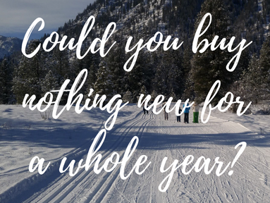 My Resolution to Buy Nothing New for a Year