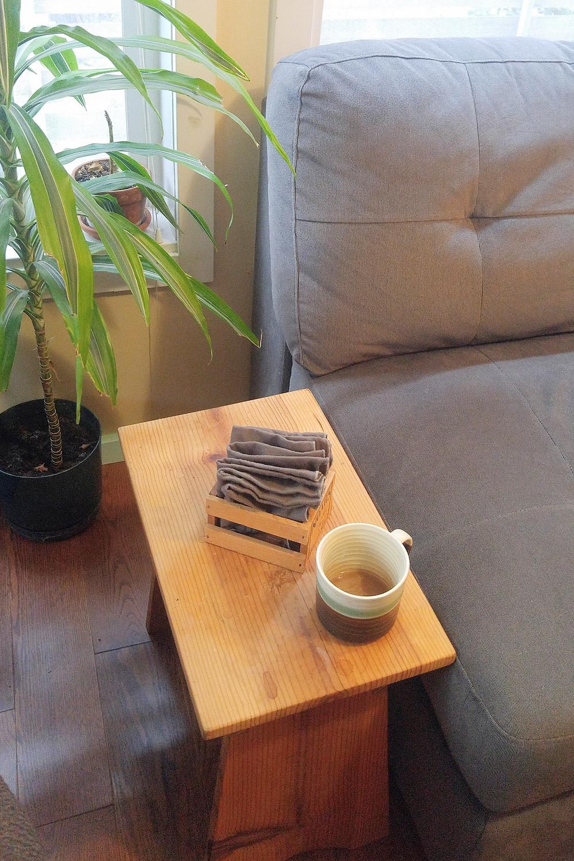Paperless towels in living room