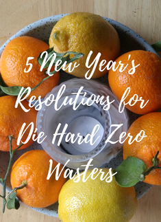 5 New Year's Resolutions for Die Hard Zero Wasters