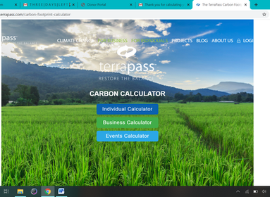 How to Calculate Your Carbon Footprint with Online Calculators