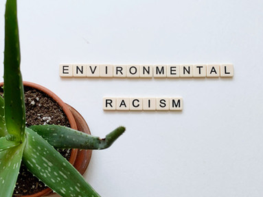 Books about Environmental Racism, White Privilege, and Climate Justice