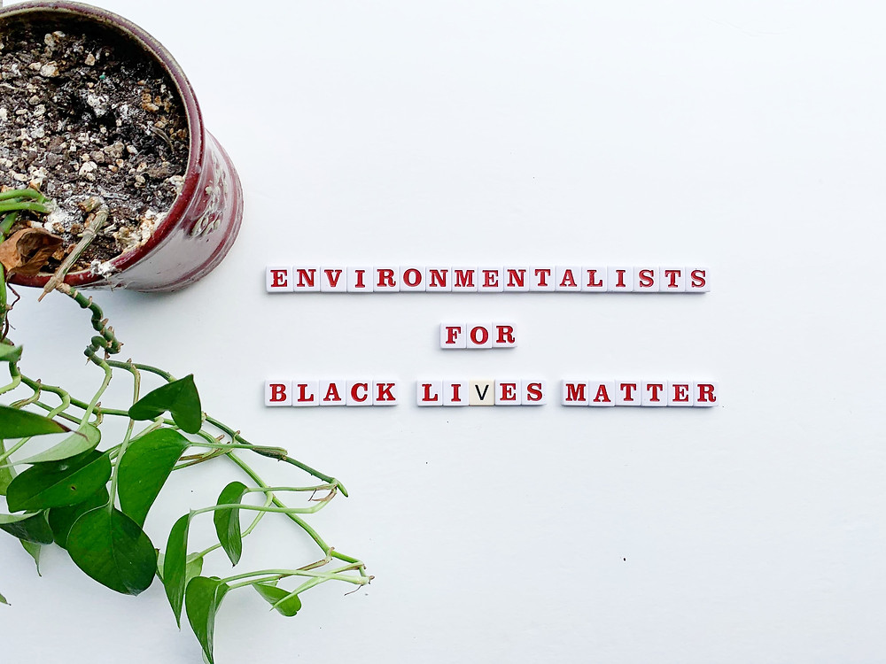 environmentalists for black lives matter