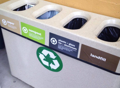 Why You Need to Conduct a Waste Audit