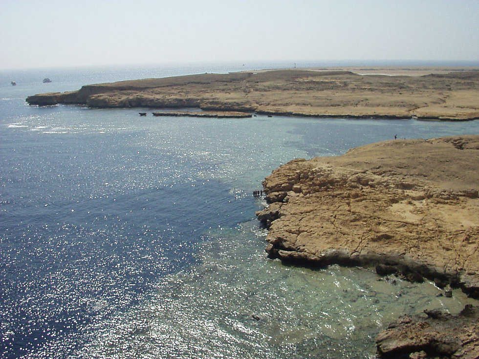 coral-reef-in-ras-muhammad-nature-park.J