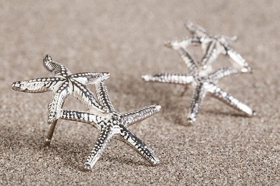 stelle marine.jpg