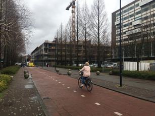 'Rijswijkse plint' betonskelet van de Colijn op hoogte!