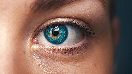 1x1_Kontaktlinsen_Auge_535x300_A1.jpg