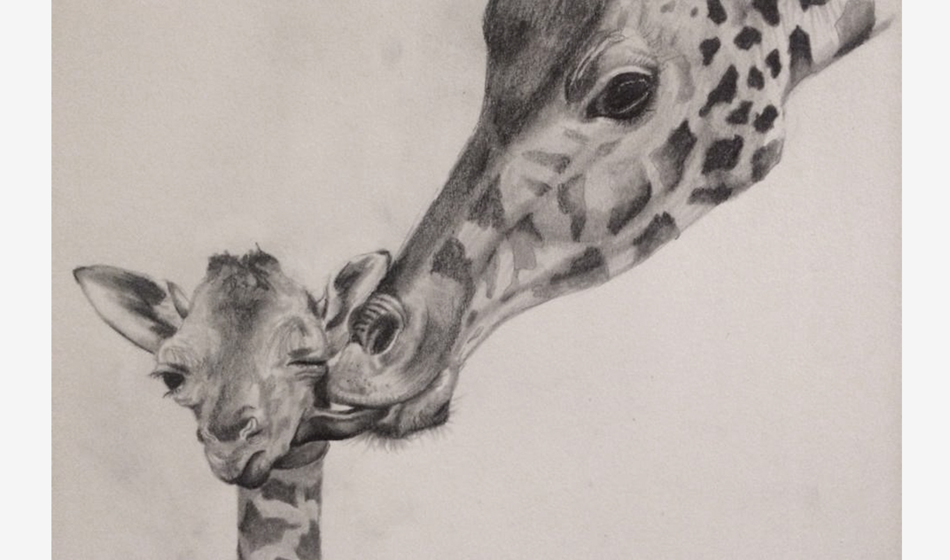 ART_Pencil_Giraffes