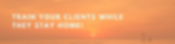Webinar Website Banner  (1).png