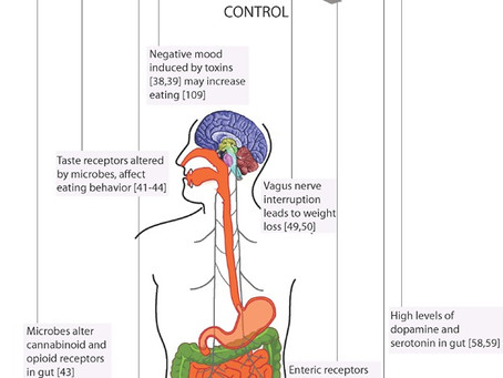 Article Review: Is Eating Behavior Manipulated by the Gastrointestinal Microbiota?