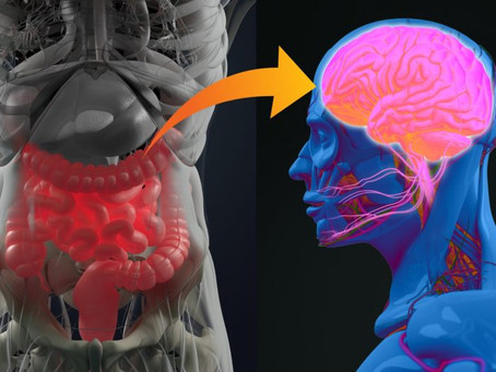 Article Review: Link Between Alzheimer's Disease and Gut Microbiota Is Confirmed
