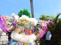 'Cultura do carnaval carioca' destina R$ 3 milhões para grupos representativos da folia de rua