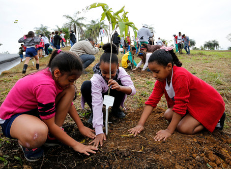 Prefeitura inicia plantio da Floresta dos Atletas em Deodoro