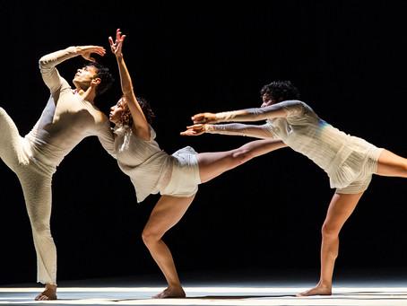 Cia de Dança Quasar comemora 30 anos e homenageia a Bossa Nova
