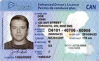 ontario-drivers-license.jpeg