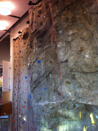 Rock Climbing Wall- Rock texture