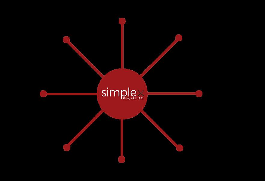 simplex_projekt_ag_muenchen_netzwerk.png