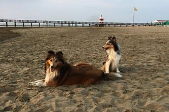 Joyce & Jessy genießen den Strand