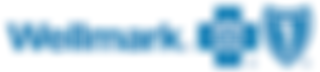 Wellmarkcorp_blue resized.png