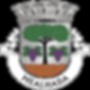 municipio_mealhada.png