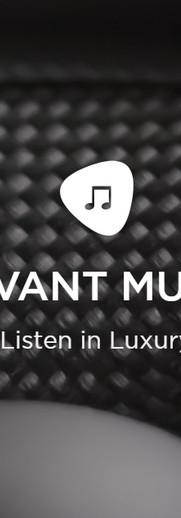 Savant music.jpg