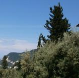 villa & sea views
