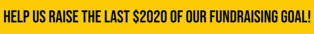"""Black text on a gold banner reads, """"Help us raise the last $2020 of our fundraising goal!"""""""