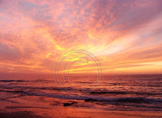 """Radiance"" © Hannah Ford.jpg"