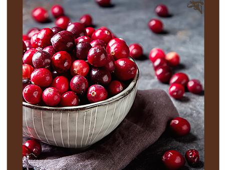 Dica Saudável | Cranberry e seus benefícios à nossa saúde